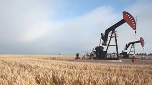 oil drill in field of wheat